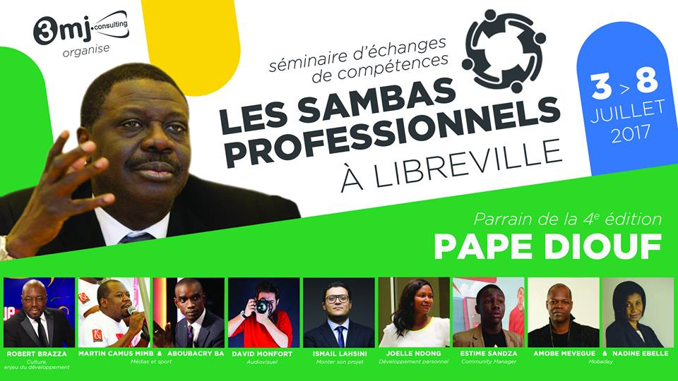 LES SAMBAS PROFESSIONNELS